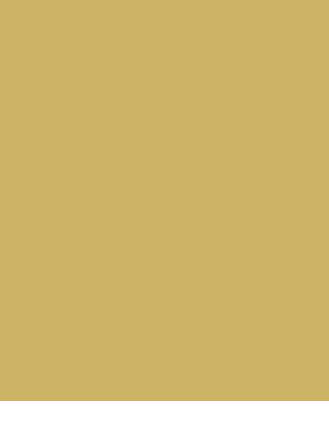 Rekomendowany Wykonawca Flugger